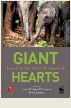 GIANT HEARTS Travels in the World of Elephants