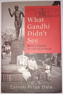 What Gandhi Didn't See Being Indian In South Africa